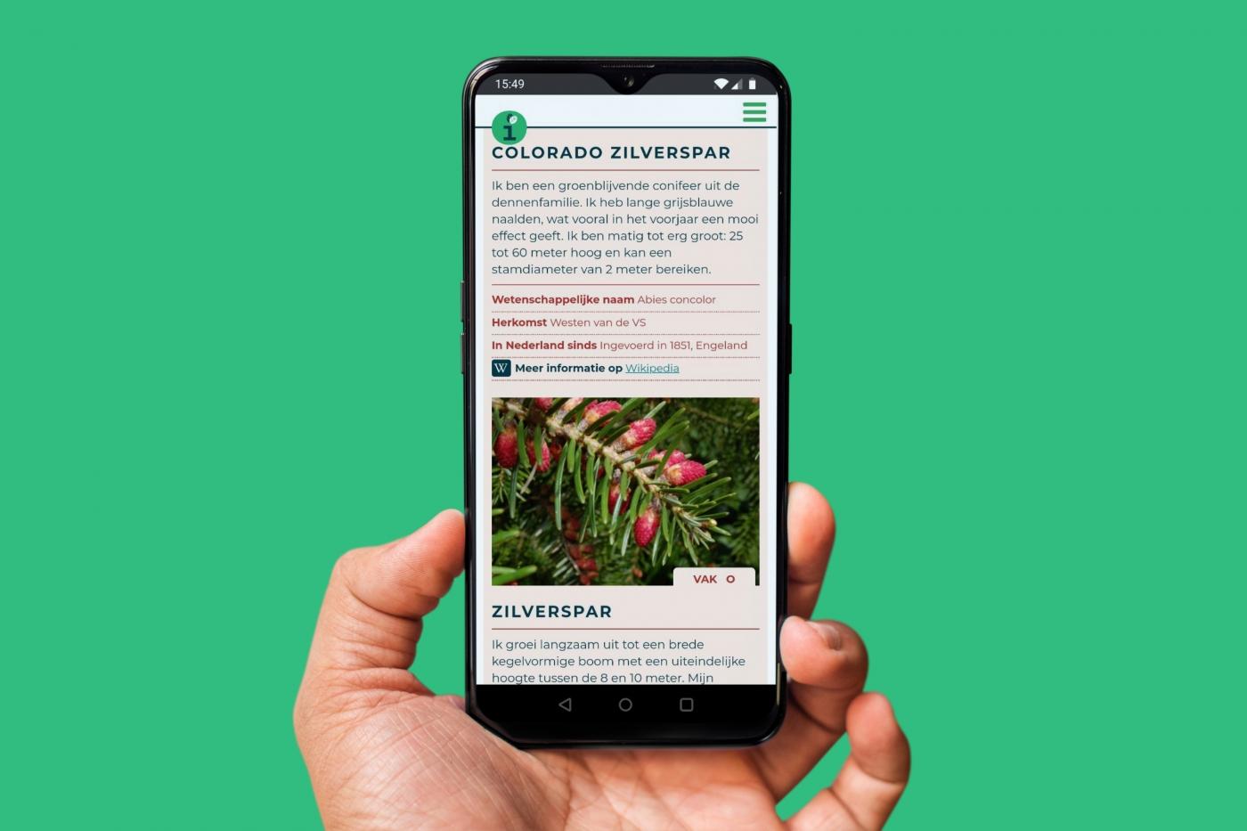 Online (levende) encyclopedie van bomen & struiken